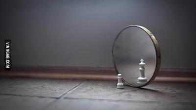 chess mirror